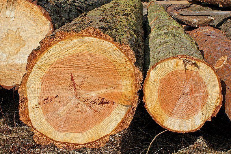 Holzfertigbauwand