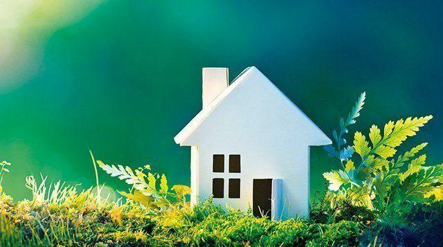 Nachhaltiges Bauen - Eine Nahaufnahme von einer Blume - Haus
