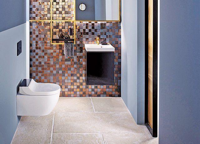 Dusch WC VDS Geberit