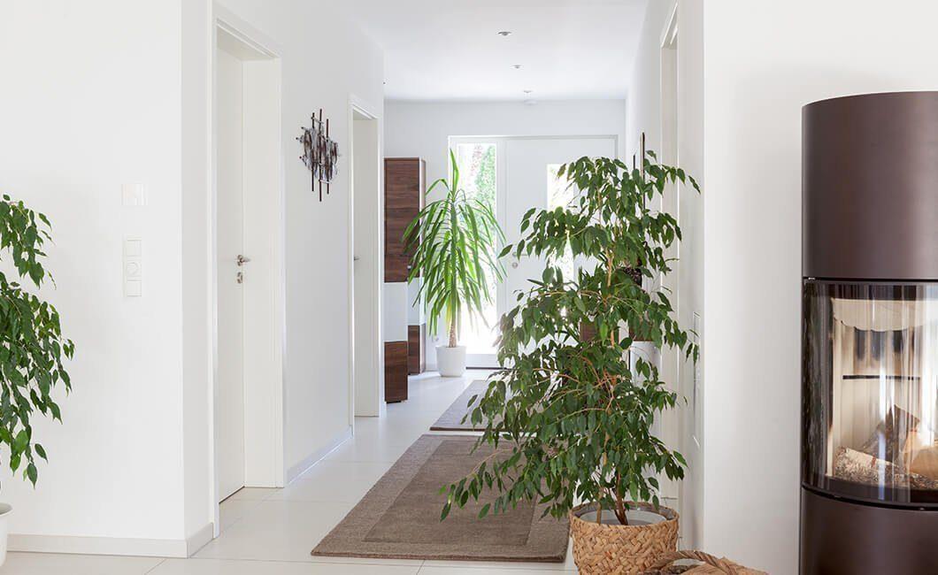 Edition 126 - Ein Raum voller Möbel und Blumenvasen auf einer Pflanze - Haus