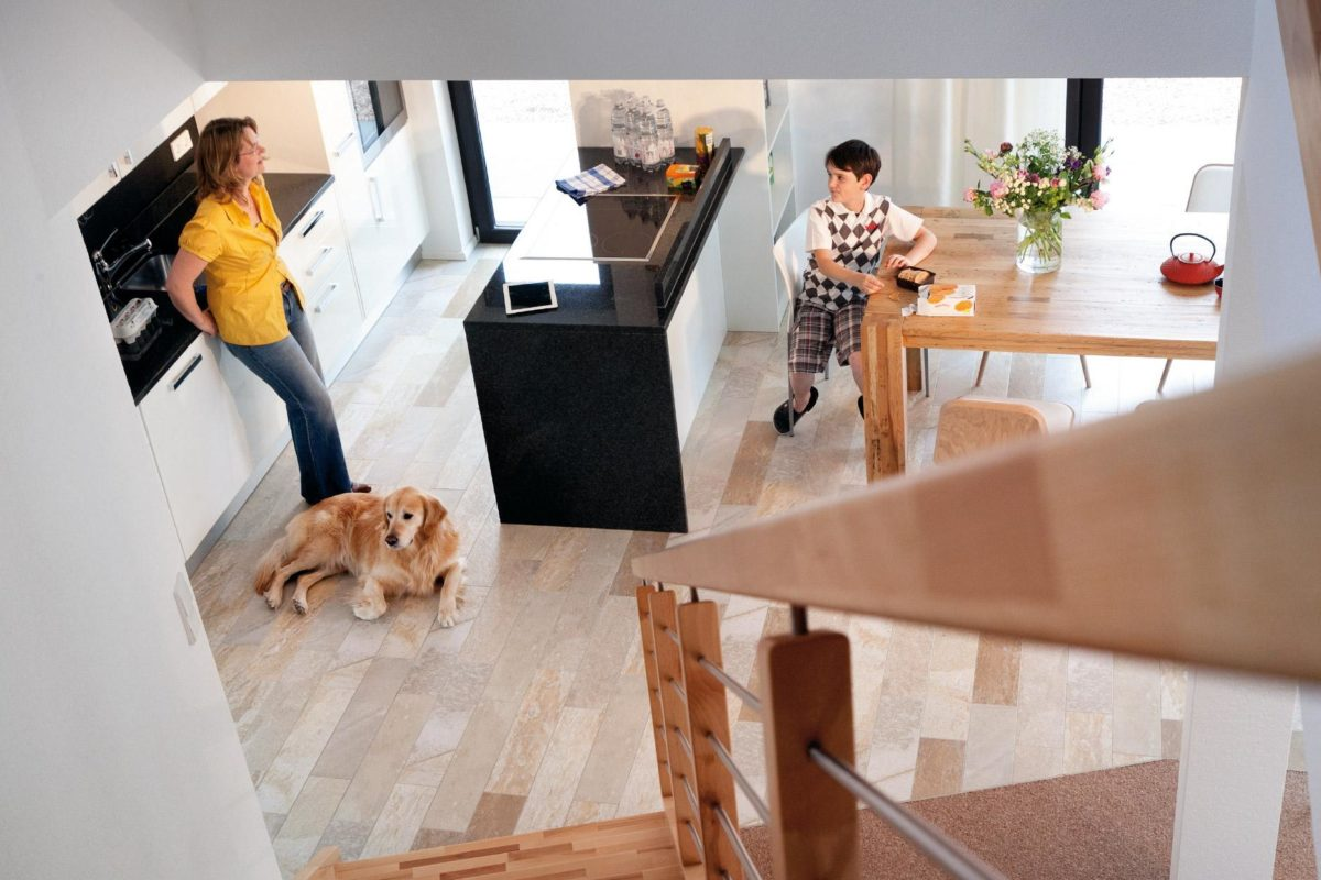 Plan E 15-140.1 - Ein Hund sitzt auf einem Tisch - Fußboden