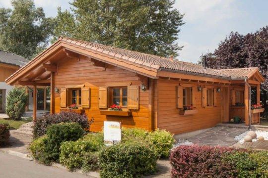 Automatisch gespeicherter Entwurf - Ein kleines haus in einem garten - Holzhaus