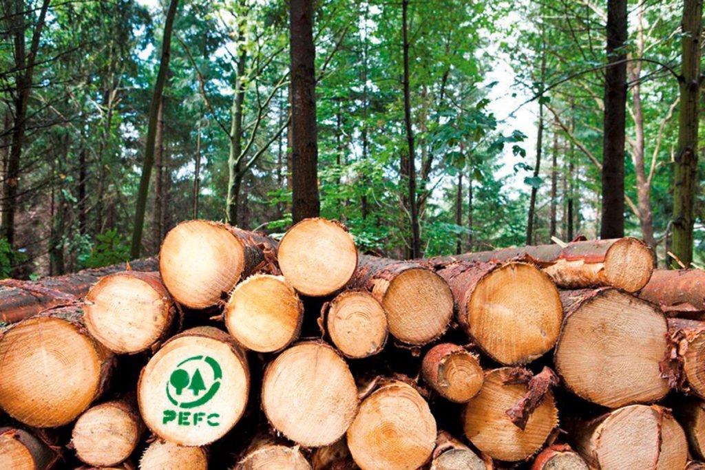 Ökologisch bauen mit Holz aus Baumstämmen mit PEFC Logo.